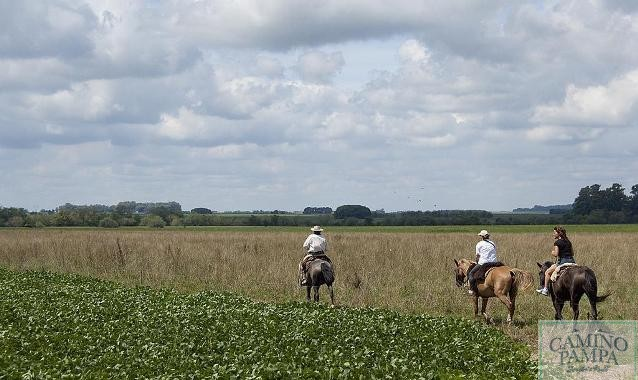 caballos para horseback riding in buenos aires ranch tour