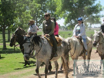 gauchos horses