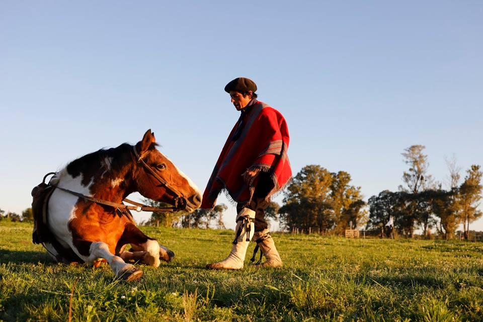 gaucho y caballos san antonio de areco